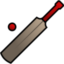128x128px size png icon of Cricket
