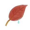 128x128px size png icon of Leaf