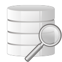 128x128px size png icon of database search