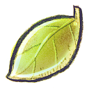 128x128px size png icon of G12 Leaf