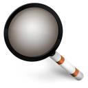 128x128px size png icon of Magnify Orange