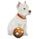 128x128px size png icon of puppy