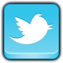 128x128px size png icon of Social Network Twitter