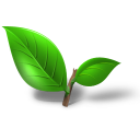 tea plant leaf Icon