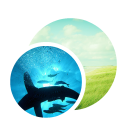 128x128px size png icon of App Preview