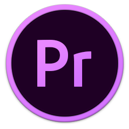 256x256px size png icon of Adobe Pr