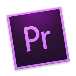 256x256px size png icon of Pr