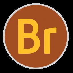 256x256px size png icon of Bridge