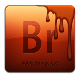 256x256px size png icon of Br CS3