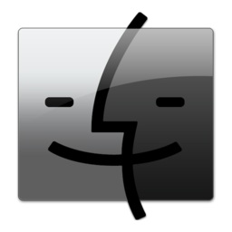 256x256px size png icon of Gray