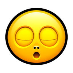 256x256px size png icon of Smiley zzz