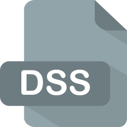 256x256px size png icon of dss