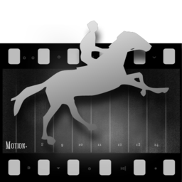 256x256px size png icon of fcs set4 motion2