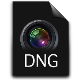 256x256px size png icon of DNG