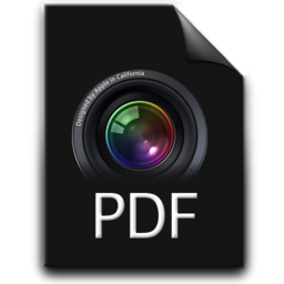 256x256px size png icon of pdf