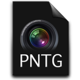 256x256px size png icon of pntg