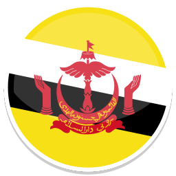 256x256px size png icon of Brunei