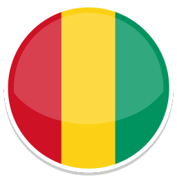 256x256px size png icon of Guinea