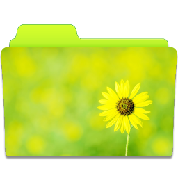 256x256px size png icon of Folder Sunflower