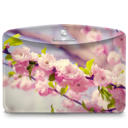 256x256px size png icon of Folder Nature Cherry Tree