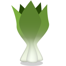 256x256px size png icon of bok choy