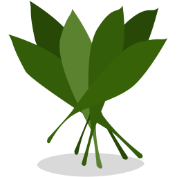 256x256px size png icon of greens