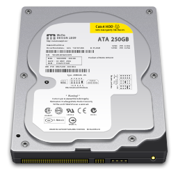 256x256px size png icon of Internal Drive 250GB