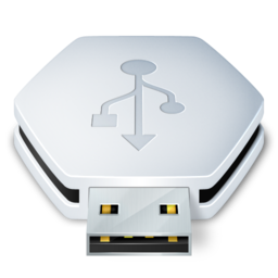 256x256px size png icon of USB Removable