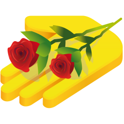 256x256px size png icon of hand rose