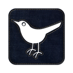 256x256px size png icon of Twitter bird2 square