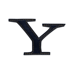 256x256px size png icon of Yahoo