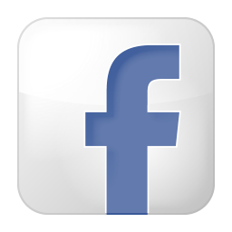 256x256px size png icon of social facebook box white