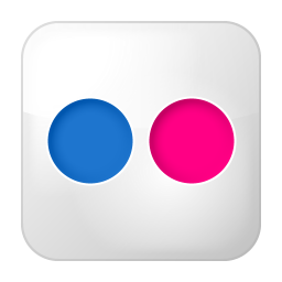256x256px size png icon of social flickr box