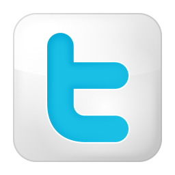 256x256px size png icon of social twitter box white