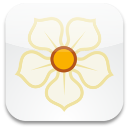 256x256px size png icon of Magnolia
