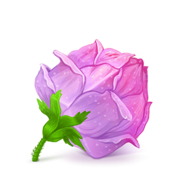 256x256px size png icon of Box 22 Rose Pink