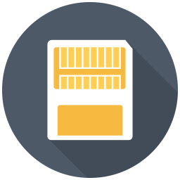 256x256px size png icon of Memory Card