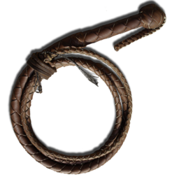 256x256px size png icon of BullWhip
