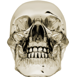 256x256px size png icon of crystalskull 1