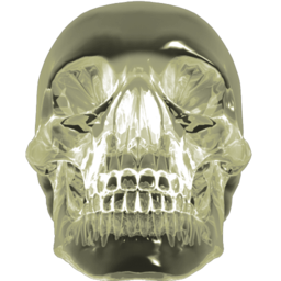 256x256px size png icon of crystalskull 2