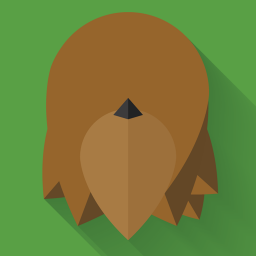 256x256px size png icon of Chewbacca