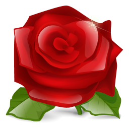 256x256px size png icon of Rose