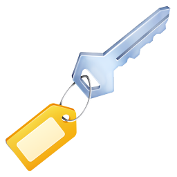 256x256px size png icon of Key