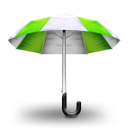 256x256px size png icon of Umbrella Green