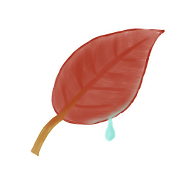256x256px size png icon of Leaf