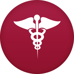 256x256px size png icon of health