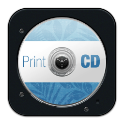256x256px size png icon of Print CD