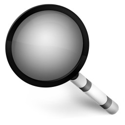 256x256px size png icon of Magnify Black