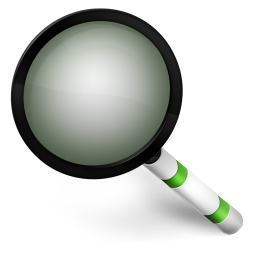 256x256px size png icon of Magnify Green