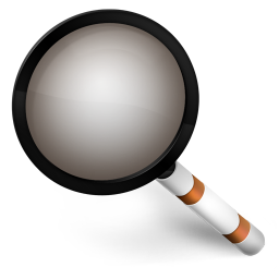 256x256px size png icon of Magnify Orange